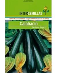 Calabacín Belleza negra, 100g