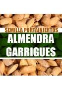 Almendra Garrigues
