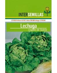 Lechuga Little gem (tipo Cogollo de Tudela), 500g