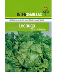 Lechuga Pierre Benite, 500g