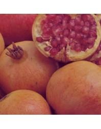 Granado variedad Mollar de Valencia