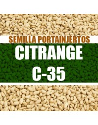 Citrange C-35